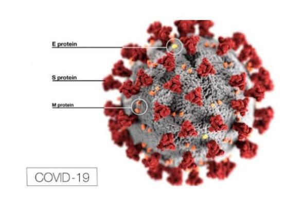 COVID-19对欧盟MDR,SCIP废物框架指令的影响