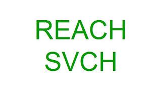 SVHC检测REACH认证机构