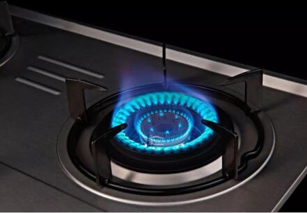 2009/142/EC_欧盟燃气GAD指令煤气灶